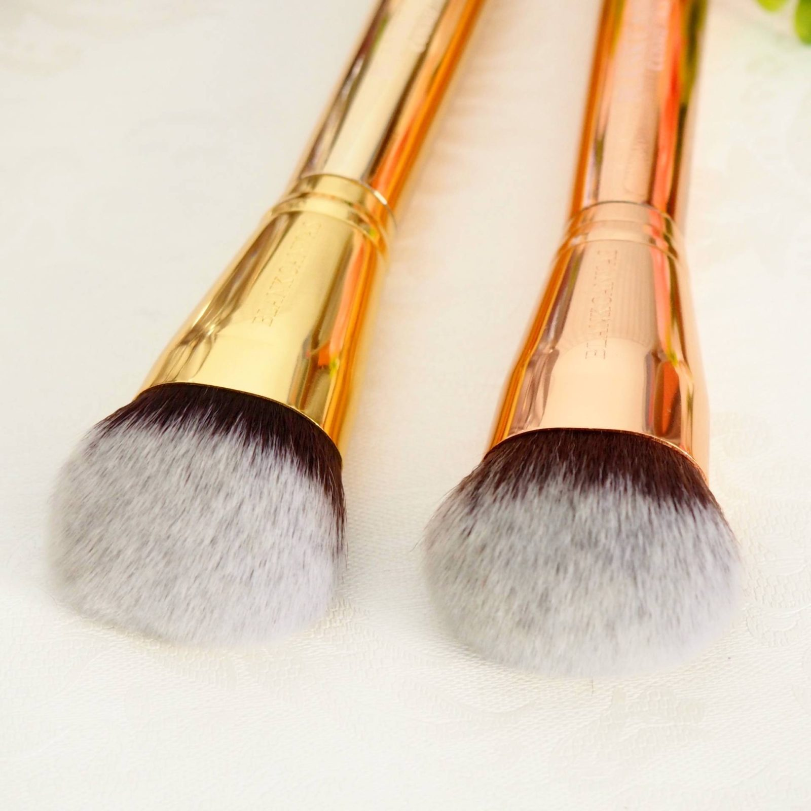 Blank Canvas Dimension Brushes F06 vs F08